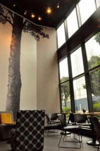 Trees Organic Coffee Yaletown Vancouver