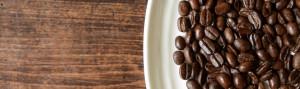 Trees Organic Coffee Vancouver