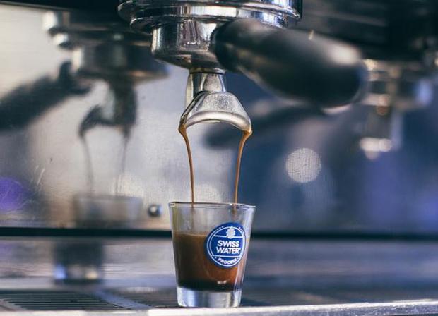 Swiss Water Decaf Coffee - Trees Organic