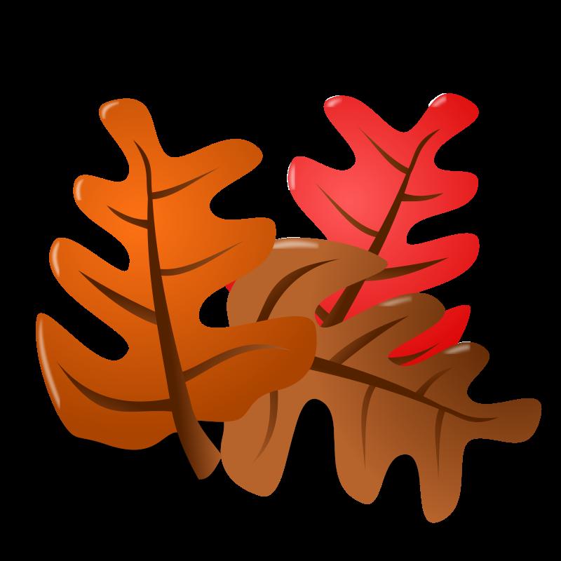 free-vector-thanksgiving