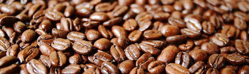 Trees Organic Coffee Beans