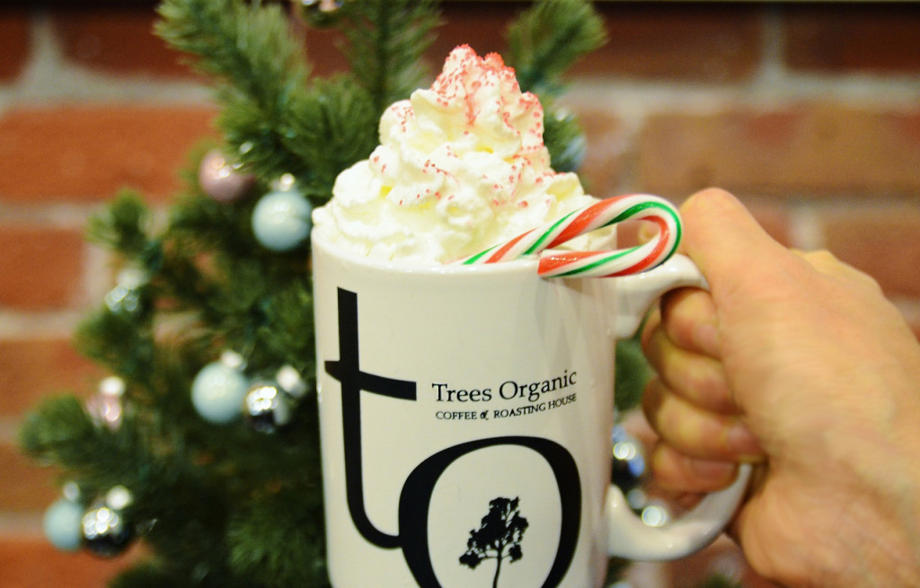 Peppermint Mocha - Trees Organic