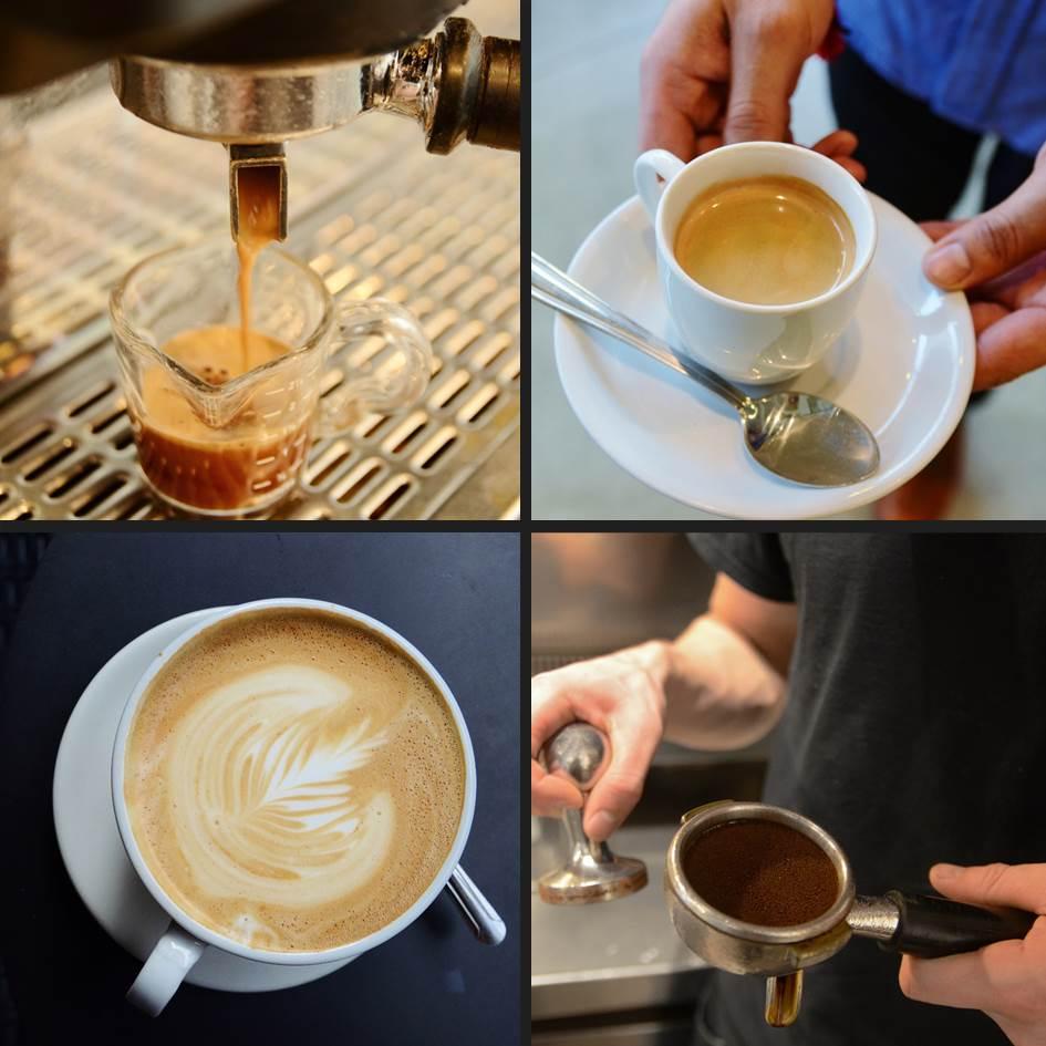 Espresso Drinks Trees Organic Coffee