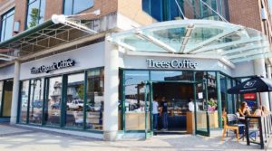 South Granville Cafe - Trees Organic Coffee & Roasting House