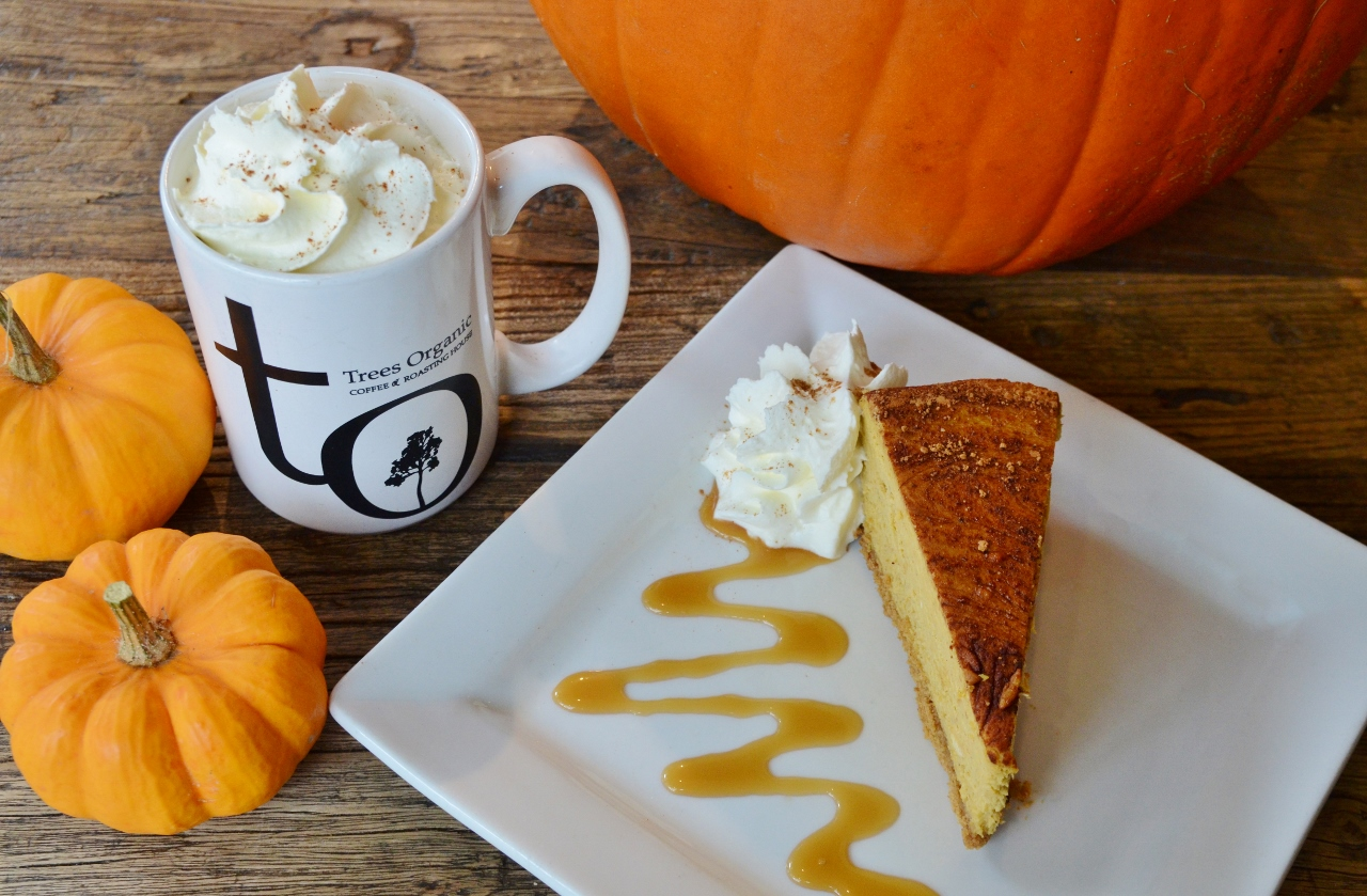 Pumpkin Spice Cheesecake and Latte by Trees Organic Coffee