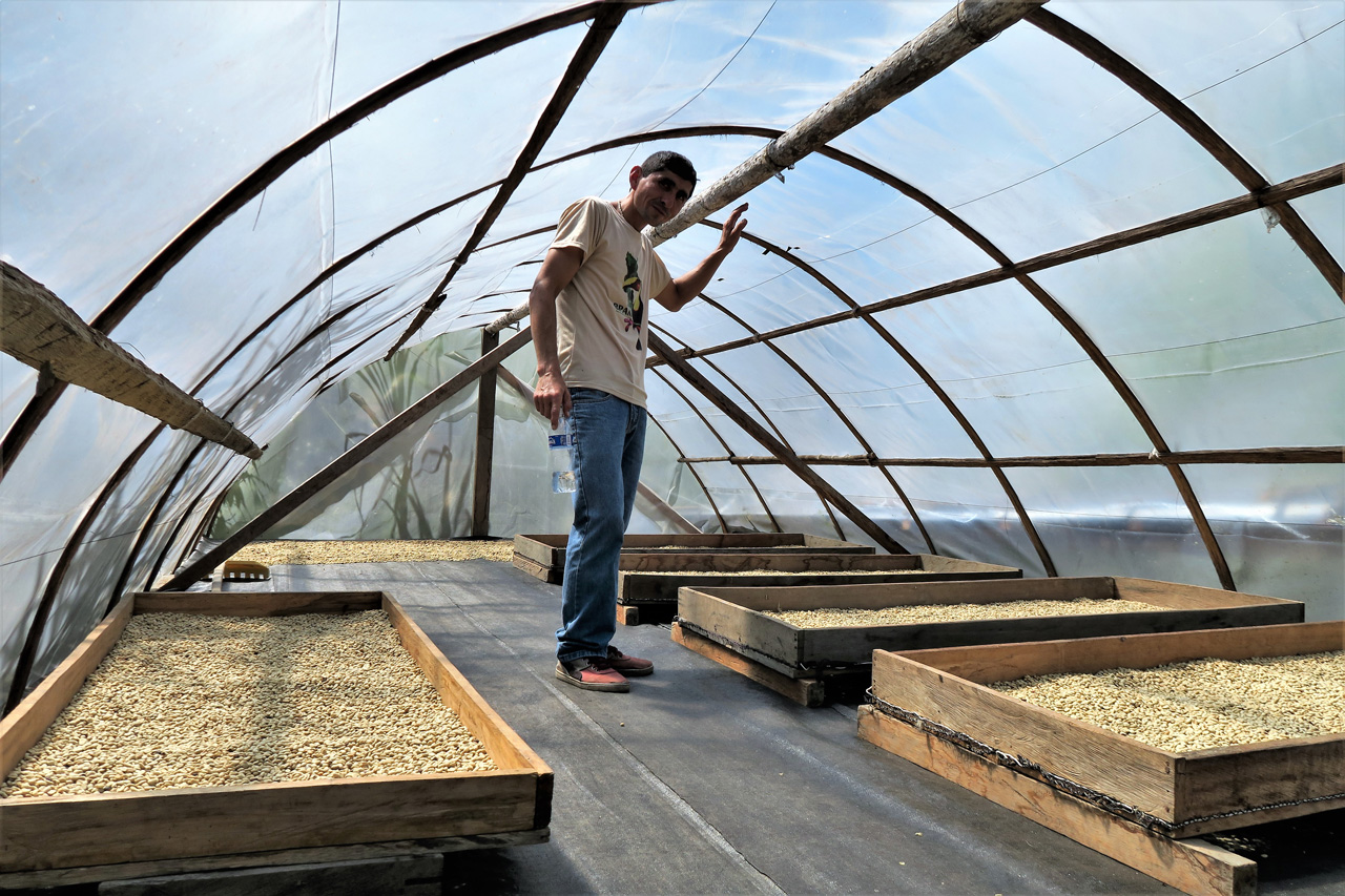 Drying Beds - Image from Optico
