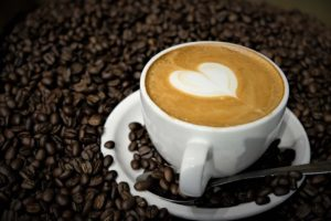 Trees Organic Coffee